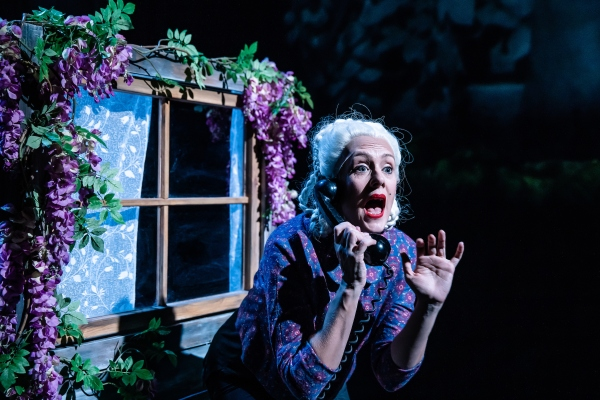 Bryony Kimmings I'm A Phoenix Bitch HOME Manchester Theatre Review